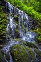 Bleakburrow Falls II by Aenea-Jones