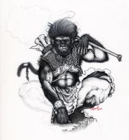 The Monkey King by TIMISDEATH2ALL
