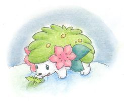 Shaymin - There is Life