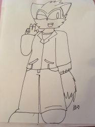 Request for: Flamingskulls245 by ShadAmyfangirl129