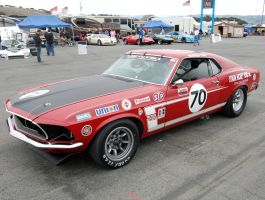 Trans Am Series Boss 302 Stang by Partywave