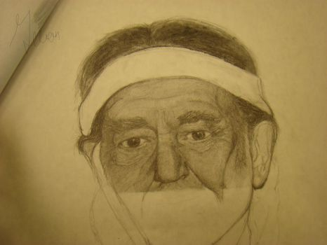 willie nelson wip by gilliancarson