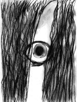 the grudge by torolily01