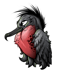 Little Frigrate Birb Commission by Artistlizard101