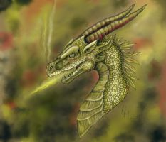 Gloden dragon: tablet trial by Marqoni