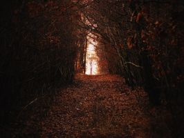 Tunnel by MoonKey19