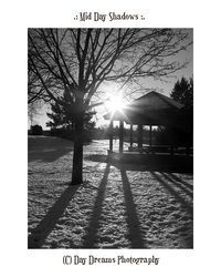.:Mid Day Shadows:. by DayDreamsPhotography