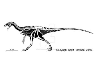 Ornitholestes by ScottHartman