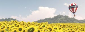 Sea of Sunflowers by OfTheDunes