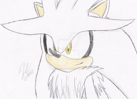 Silver the Hedgehog by AuroraIcefield