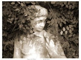 Statue in the Shadows by LeeAnneKortus