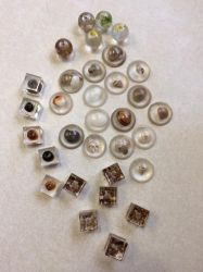 Nature in Resin charms by mintdawn
