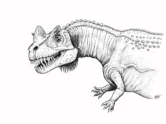 Curious Ceratosaurus by batworker