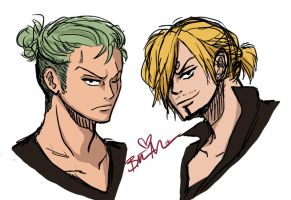 Zoro and Sanji by UltiMaL