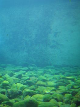 310 Underwater Pebbles by Tigers-stock
