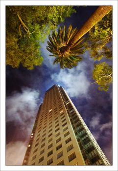Edificio de Madero nocturno by ChrisT-Blood