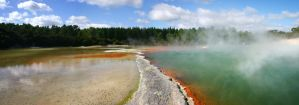 Champagne Pool by Danwhitedesigns