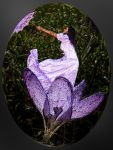 Maerzfee - Fairy of March by Cundrie-la-Surziere