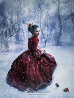 A Winter's Tale by shadeley
