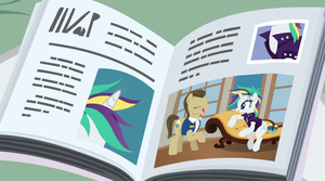 Rarity Great Pictures In Magazim 4 by Wakko2010
