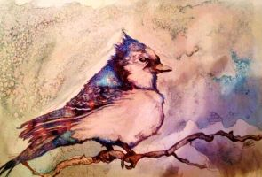 Blue Jay Way- Tessie Clune by tessieart333