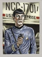 Mr SPOCK colour by Bungle0