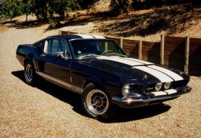 Early GT500 by tundra-timmy