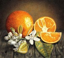 Oranges by PutyatinaEkaterina