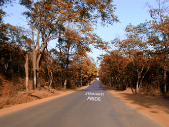 The Straight Pride Road by Straight-Pride