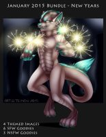 New Years 2015 Bundle by Temrin