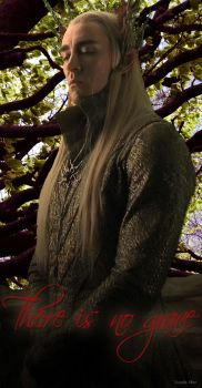 Thranduil: There is no grave... by kayelleallen