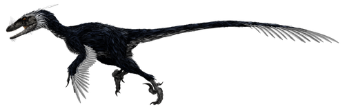Deinonychus Concept by PWNZ3R-Dragon
