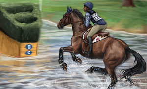 Rolex Cross Country 2016 by weezapony