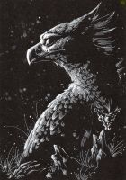 Gryphon of the night by TheTundraGhost