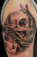 skull with mirror 1st session by bhbettie