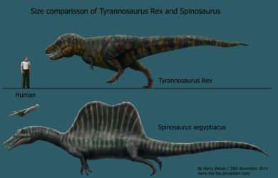 Spinosaurus and T-Rex Size Comparison by Harry-the-Fox