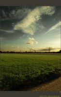 where green is grown by teutowart