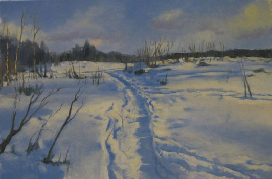 Track In The Snow2 by kahuella