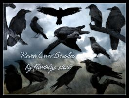 Raven Crow Brushes by flordelys-stock