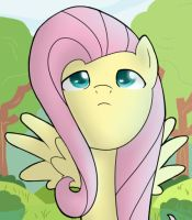 FlutterShy by nerow94