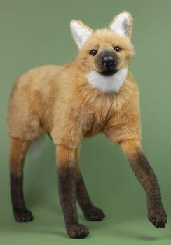 Maned wolf by LisaAP