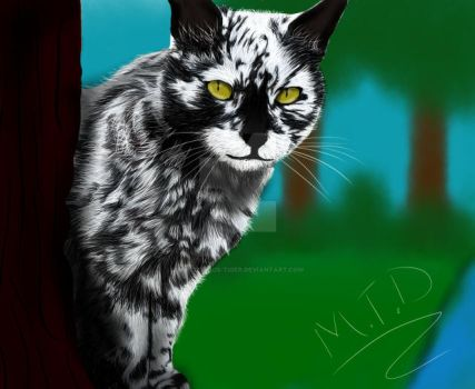 Birchtail - Riverclan by Mysterious-Tiger