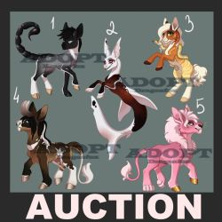 SALE Adopt|AUCTION 5 Ponies OPEN!! by DragonFoxAdopts