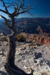 Grand Canyon by MartinIsaac