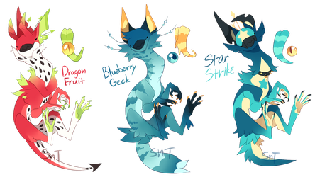 {ADOPTS} Guest Auction feat Sweet [CLOSED] by WellHidden