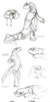 One Calo, Many Taris (Sketchdump) by The-Snowlion
