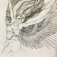 Demon Harpy [wip] by Anomalies13