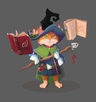cat wizard by Dameo-in