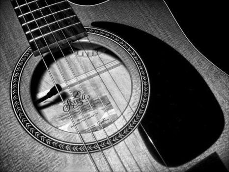 Seagull Guitar by Theslaw
