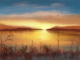 Marsh by Sillybilly60